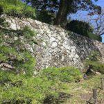 三の丸櫓門の石垣