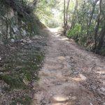 独歩碑の道
